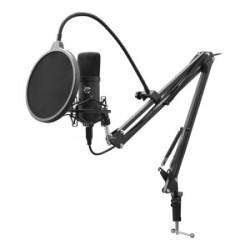 WS DSM 01 ZONIS Microphone