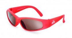 Crazy Dog naočare od 1 do 3 godine ( 8530014 )