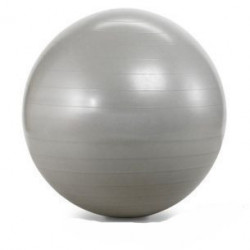 Capriolo pilates lopta za vežbanje 55cm ( 291356 )