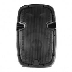 Pasivna zvučna kutija 220W ( PAX25PRO )