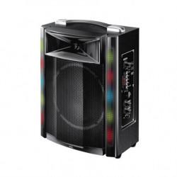 SAL Prenosna zvučna kutija sa BT konekcijom 30W ( PAR16BT )