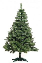 Evergreen - Zelena novogodišnja jelka 220 cm
