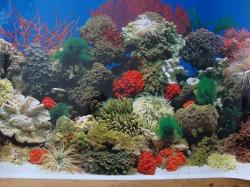 Trixie Pozadina za akvarijum,slatka/slana voda 49 cm x 15 m ( 8115 )