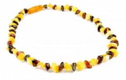 Grunspecht ogrlica od ćilibara, 35cm, boja šarena ( 3380002 )