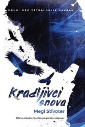 Kradljivci snova - Megi Stivoter ( R0058 )