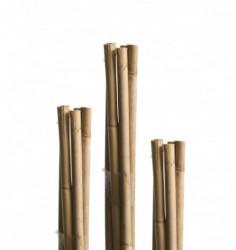 Windhager Bambus štap 240cm ( WH 05612 )