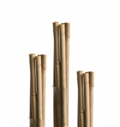 Windhager bambus štap 7 kom ( WH 05607 )