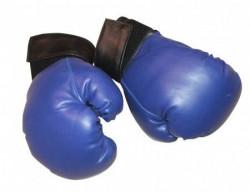 Capriolo boks rukavice-plave pv 10-oz ( S100444-10 )