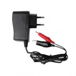 Punjač olovnih akumulatora 12V ( TS-1012C )