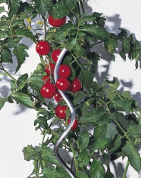 Windhager pritka za paradajz spiralna 200cm ( WH 05638 )