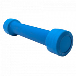 HJ Metalni teg sa gumenom oblogom 10kg ( acn-db-10am )