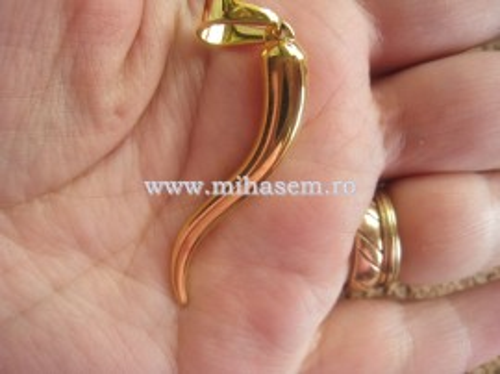 Medalion INOX  ( otel inoxidabil ) cod mihasem294