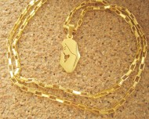 Lant dama +medalion INOX ( otel inoxidabil ) cod mihasem598