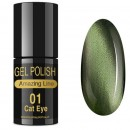 VERNIZ GEL CAT EYE 5ml 01
