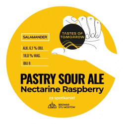 eticheta Salamander 'Tastes of Tomorrow' Pastry Sour Ale Nectarine Raspberry