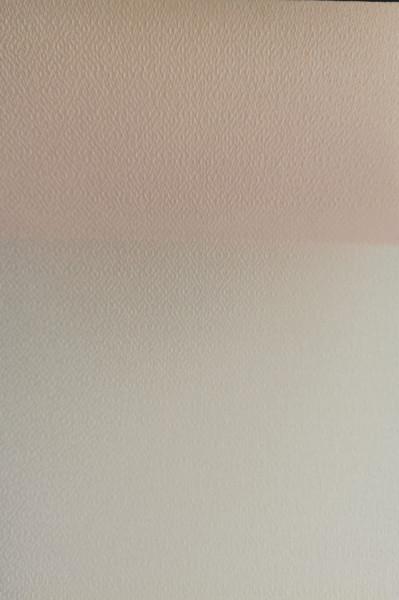 Lamele pentru jaluzele verticale H 140 EDEN-V3/BUC PIERSICA