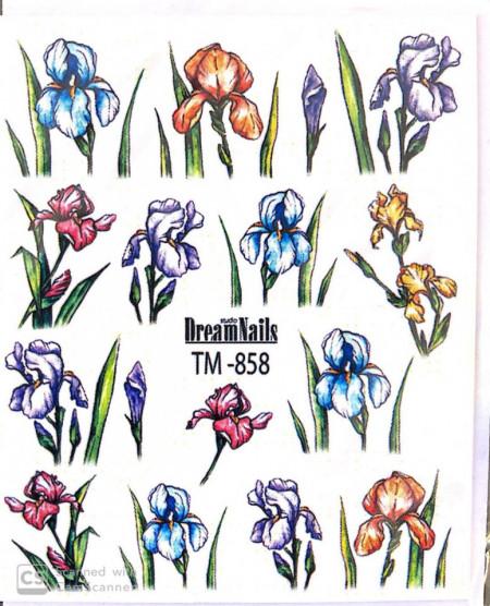 Poze tatuaj TM 858