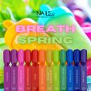 NAILS Set Breath Of Spring - 12 oje semipermanente