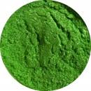 Pigment Shine Green