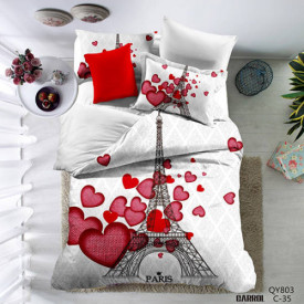 Lenjerie de pat poplin - două persoane (QY-803)