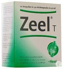 Zeel T sol.inj. 2 ml + TRANSPORT GRATUIT