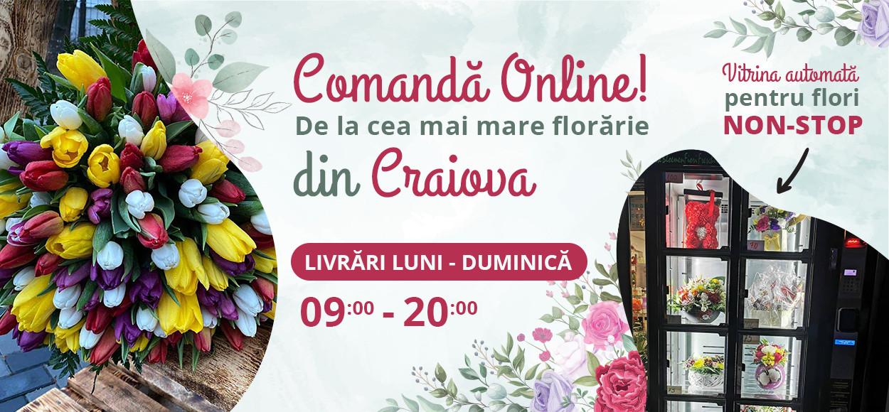 https://www.florariecustil.ro/catalog/buchete-flori-aranjamente-flori-craiova