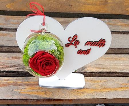 trandafir-criogenat-inima