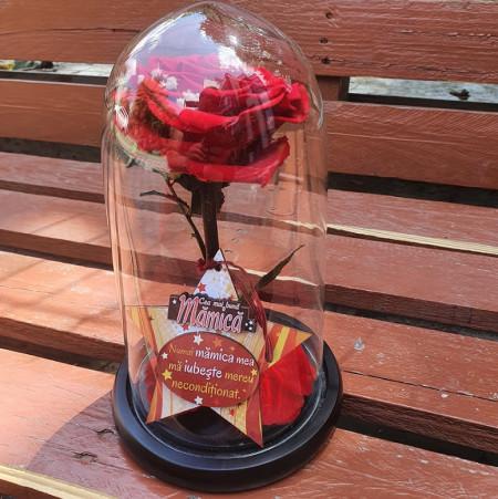 Trandafir-criogenat-cu-mesaj-in-cupola