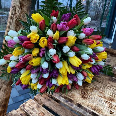 buchet-101-lalele-multicolore
