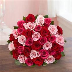 Buchet de 77 trandafiri