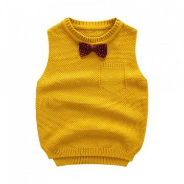 Vesta tricotata Anthony