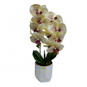 Orhidee cu aspect natural in ghiveci ceramic alb, 50 cm