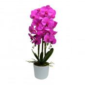Orhidee cu aspect natural in ghiveci ceramic alb, 60 cm