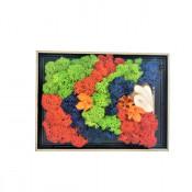 Tablou decorativ cu licheni stabilizati, model campie, 19x14 cm
