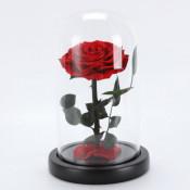 Trandafir criogenat XXL in cupola de sticla cu blat negru