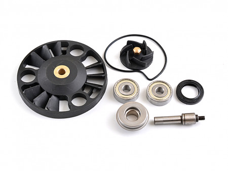 Set reparatie pompa apa Piaggio Beverly RST 125/X8/X9-complet