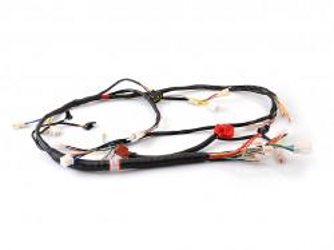 Cabluri tronson principal