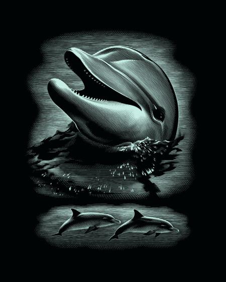 """Desen prin razuire """"Delfin"""" 20x25,5 cm"""