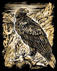 """Desen prin razuire """"Vultur"""" 20,4x25,5 cm"""