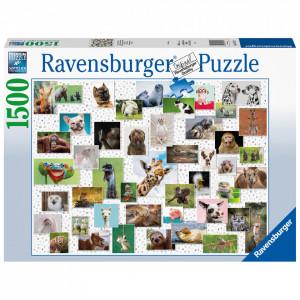 Puzzle Colaj Cu Animale, 1500 Piese