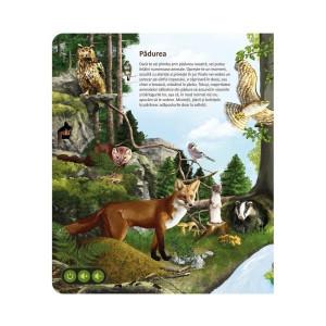 Set Lumea Animalelor - Raspundel Istetel