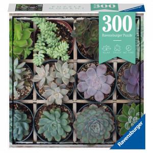 Puzzle Plante Suculente, 300 Piese