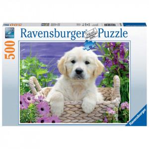 Puzzle Golden Retriever, 500 Piese