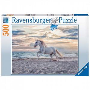 Puzzle Cal Pe Plaja, 500 Piese
