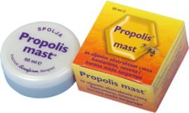 Slika PROPOLIS MAST