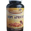 HOPI APRICOT