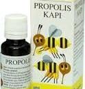 PROPOLIS KAPI