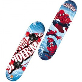 Poze Skateboard Spider Man