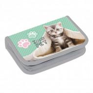 Penar echipat pastel pisicuta