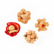 Set 4 piese Wooden Brain Puzzles Extreme